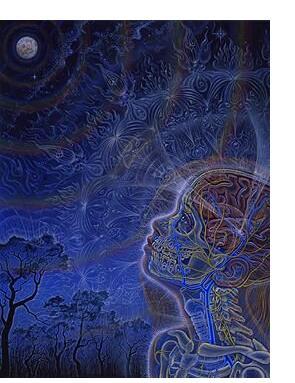 Alex Grey :'Wonder' - 1996, acrylic on paper, 16 x 20 ins