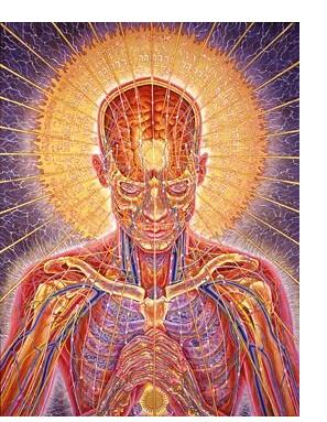 Alex Grey :'Praying' - 1984, oil on linen, 48 x 36 ins