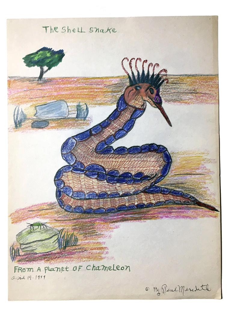 """Rene Meredith - """"The Shell Snake - From a Planet of Chameleon"""" 12 x 9 in, pencil & crayon"""