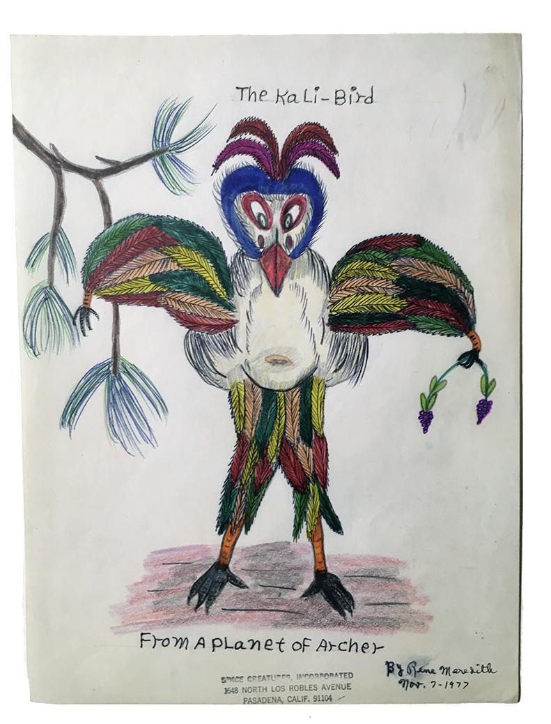 """Rene Meredith - """"The Kali Bird - From a Planet of Archer"""" 12 x 9 in, pencil & crayon"""