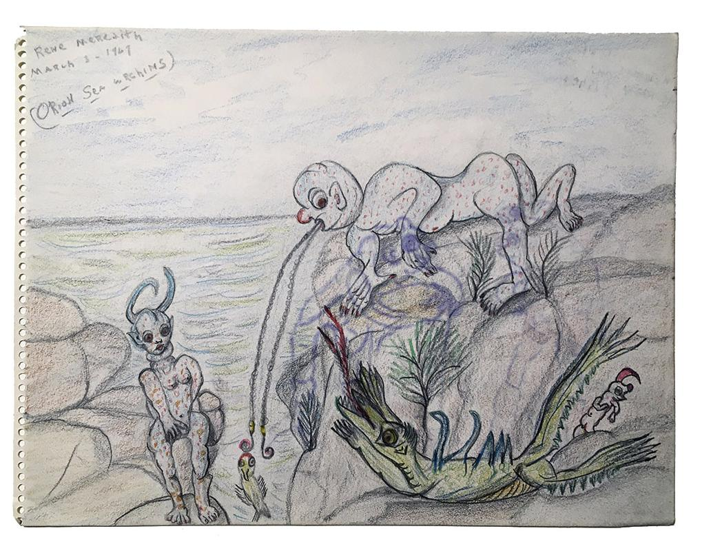 """Rene Meredith - (two-sided, side B) """"Orion - Sea Urchins"""" 12 x 9 in, pencil & crayon"""